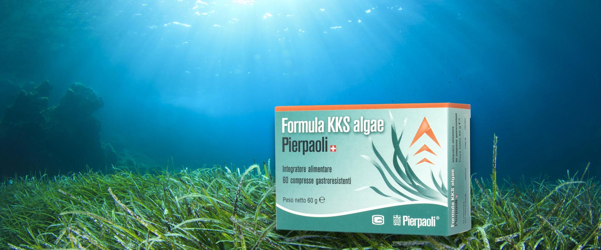 Alghe Dr. Pierpaoli